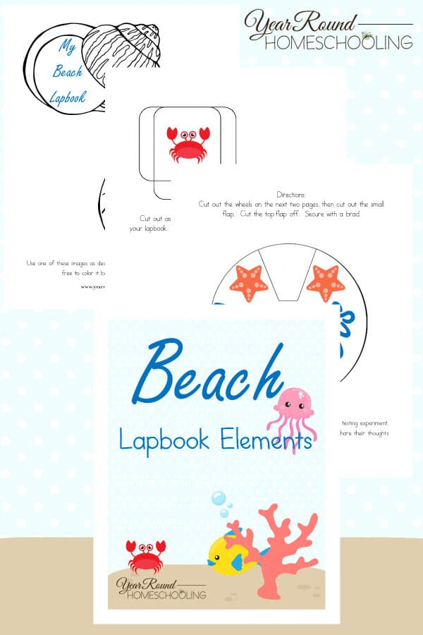 beach lapbook, beach study, lapbook, lapbooking, homeschool, homeschooling, printable