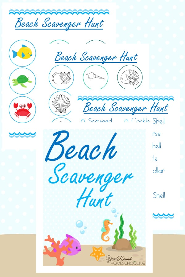 beach scavenger hunt, nature study, beach, scavenger hunt, homeschool, homeschooling, printable