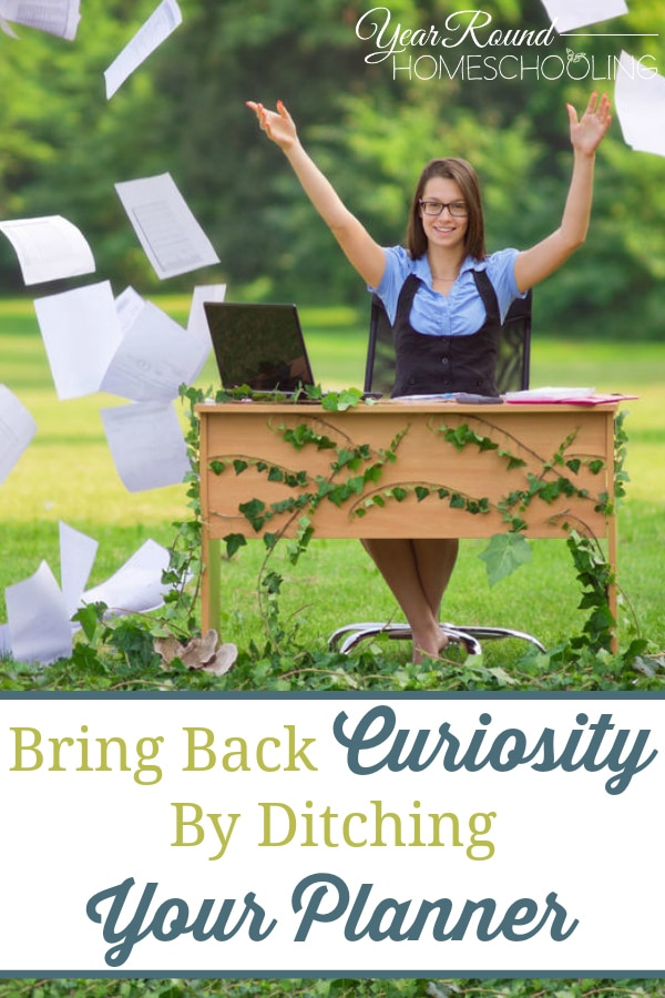 bring back curiosity, ditching your planner, ditch your planner, curiosity