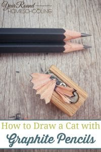 How to Draw a Cat with Graphite Pencils, draw a cat with graphite pencils, draw a cat