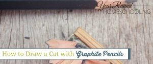 How to Draw a Cat with Graphite Pencils