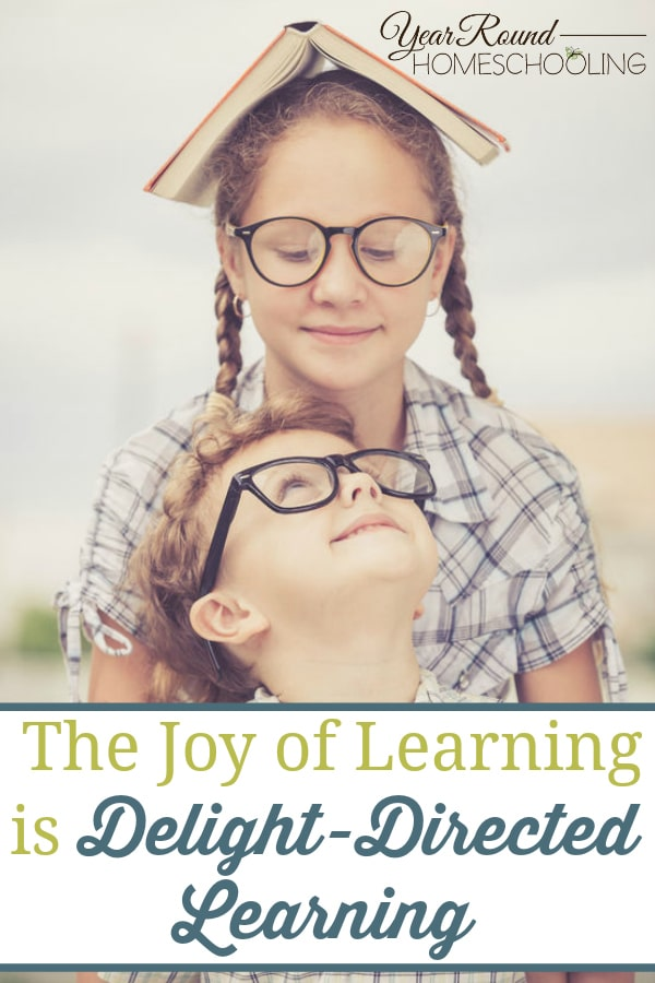 delight-directed learning, joy of learning