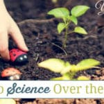 6 Ways to do Science Over the Summer