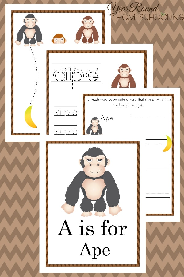 a is for ape activity pack, a is for ape activity, ape activity pack, ape activity