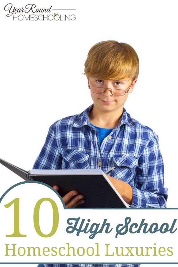 high school homeschool, homeschool high school, homeschooling high school, high school homeschooling