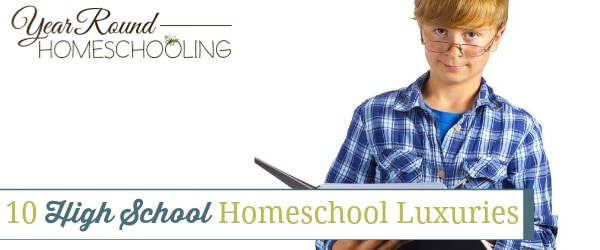 10 High School Homeschool Luxuries
