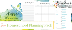 june homeschool planning, june homeschool planning pack, homeschool planning pack june