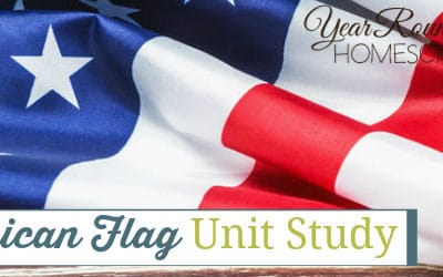 American Flag Unit Study