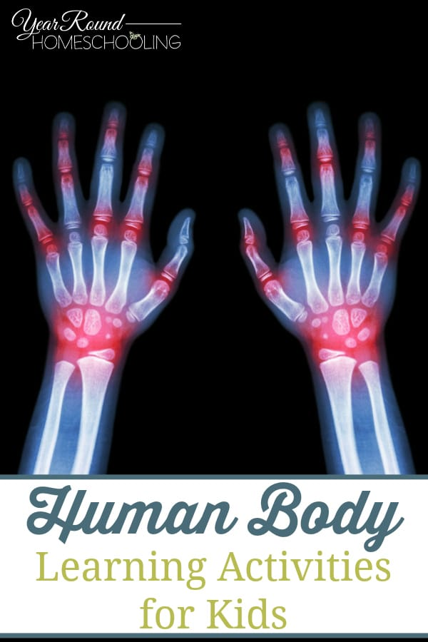 human body learning activities, human body activities, human body