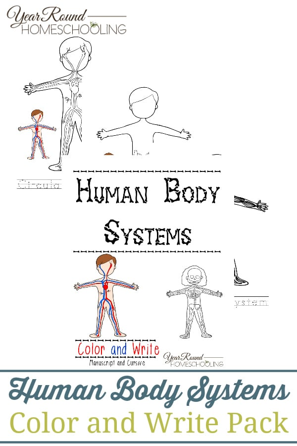 human body systems color and write year round homeschooling