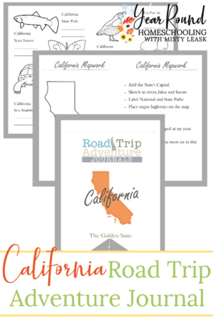 California Road Trip Adventure Journal