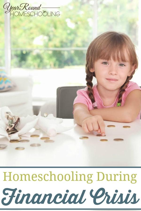 homeschooling during financial crisis, homeschool during financial crisis, homeschooling during a financial crisis, homeschool during a financial crisis