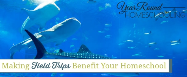 making field trips beneficial, field trips benefit your homeschool, field trip benefits, homeschool field trips