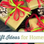 Christmas Gift Ideas for Homeschool Kids