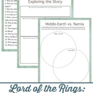 fellowship of the ring movie study, fellowship of the ring movie, fellowship of the ring, Lord of the Rings movie study, Lord of the Rings movie