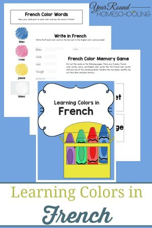 Learning Colors in French