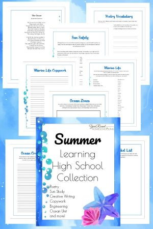High School Summer Learning Collection