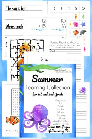 1st and 2nd Grade Summer Learning Collection