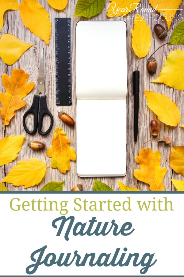 getting started with nature journaling, getting started nature journaling, start nature journaling, how to get started with nature journaling, nature journaling