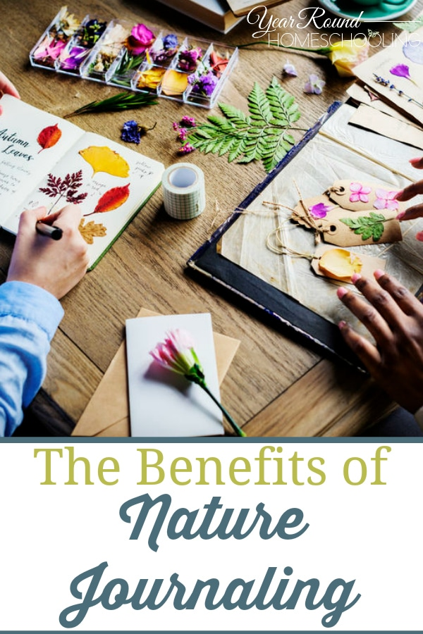 benefits of nature journaling, benefits nature journaling, nature journaling benefits, nature journaling