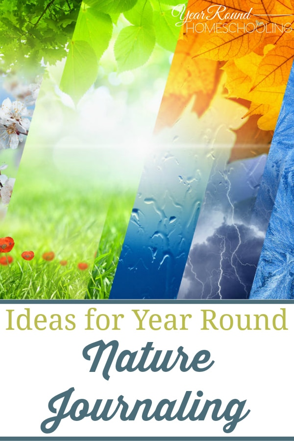 year round nature journaling ideas, nature journaling ideas, nature journal ideas, nature journal