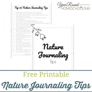 Nature Journaling Tips