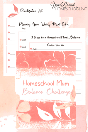 Homeschool Mom Balance Challenge Pack