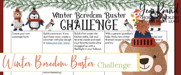 january winter boredom buster challenge, winter boredom buster challenge, winter boredom buster, january challenge