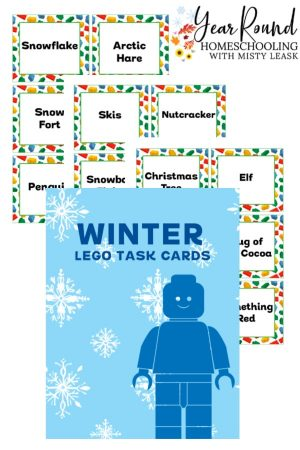 Winter Lego Task Cards Pack