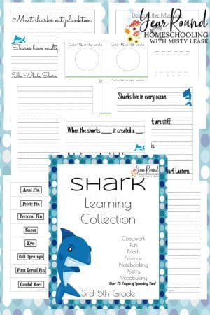 3rd-5th Shark Learning Collection