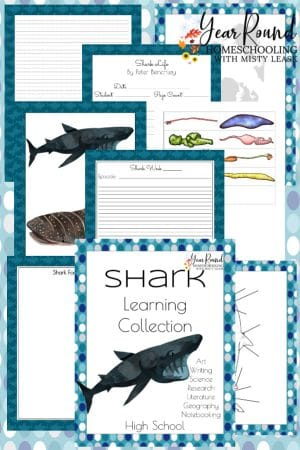 High School Shark Learning Collection