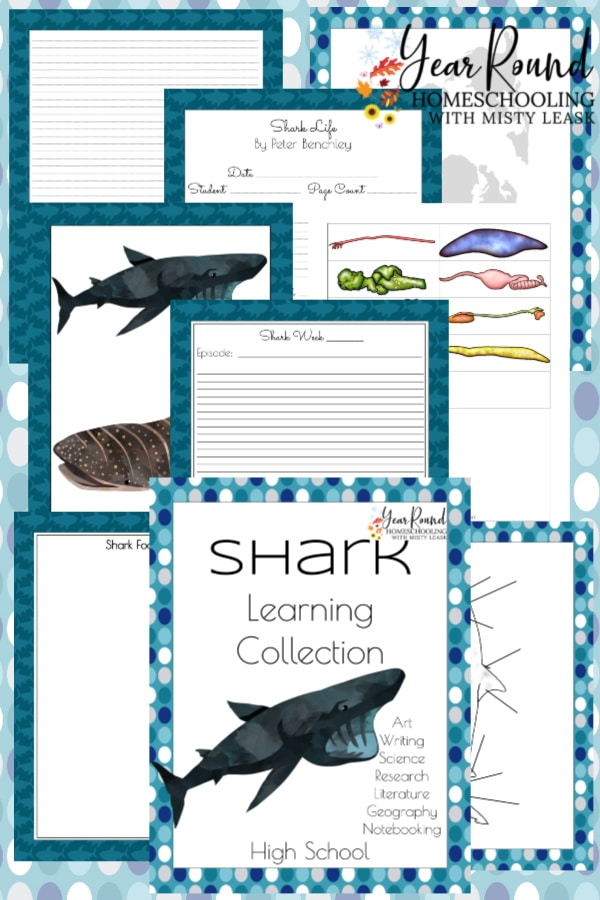 shark study, study shark, learning shark week, shark week learning, shark week homeschool, homeschool shark week, homeschooling shark week, shark week homeschooling, shark learning, shark homeschool, shark homeschooling, homeschool shark, homeschooling shark, shark school 9th grade, shark school 10th grade, shark school 11th grade, shark school 12th grade, shark school high school, shark learning 9th grade, shark learning 10th grade, shark learning 11th grade, shark learning 12th grade, shark learning high school, shark learning, 9th grade shark learning, 10th grade shark learning, 11th grade shark learning, 12th grade shark learning, high school shark learning, shark learning activities, shark 9th grade, shark 10th grade, shark 11th grade, shark 12th grade, shark high school