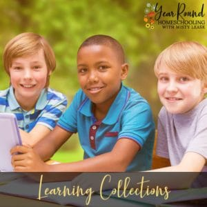 Learning Collections