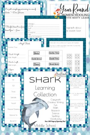 Middle School Shark Learning Collection
