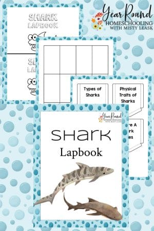 Shark Lapbook Pack