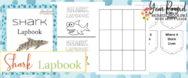 shark lapbook, lapbook shark