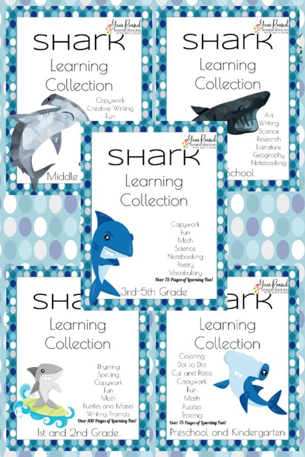 shark learning, shark homeschool, shark homeschooling, homeschool shark, homeschooling shark, learning shark week, shark week learning, shark week homeschool, homeschool shark week, homeschooling shark week, shark week homeschooling