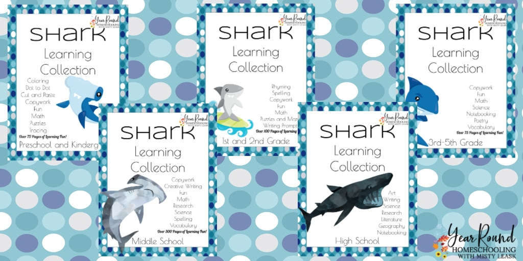 shark study, study shark, shark learning, shark homeschool, shark homeschooling, homeschool shark, homeschooling shark, learning shark week, shark week learning, shark week homeschool, homeschool shark week, homeschooling shark week, shark week homeschooling