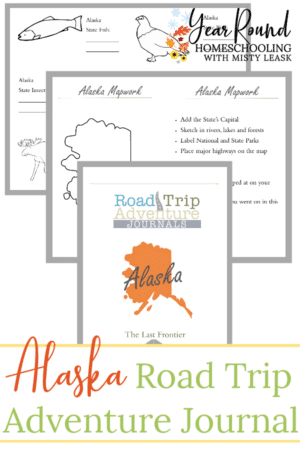 Alaska Road Trip Adventure Journal