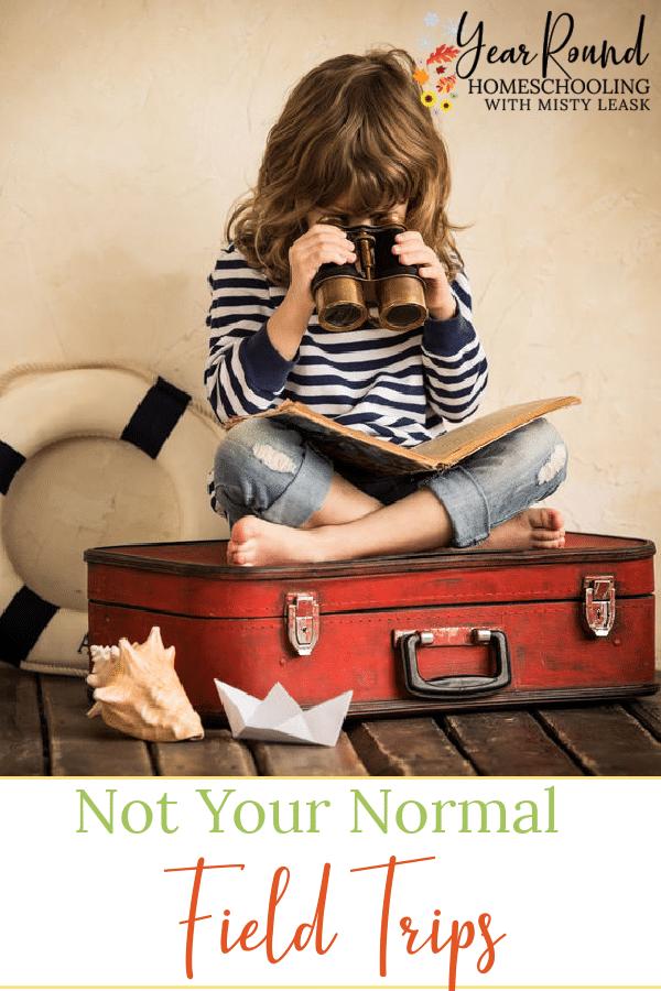 field trips, not your normal field trips, homeschool field trips, field trip ideas