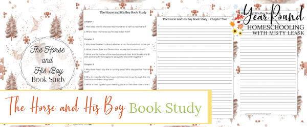 the horse and his boy book study, book study the horse and his boy, narnia book study, book study narnia, the chronicles of narnia book study, book study the chronicles of narnia