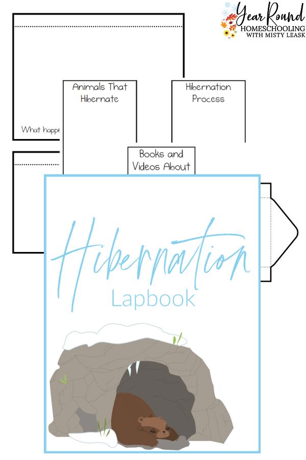 hibernation lapbook, lapbook hibernation