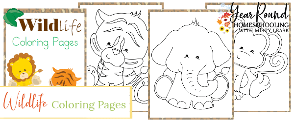 wildlife coloring pages, wildlife color, wildlife coloring