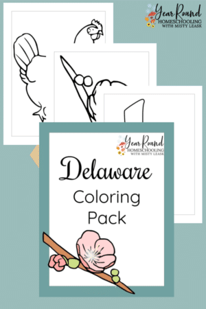 Delaware Coloring Pages Pack