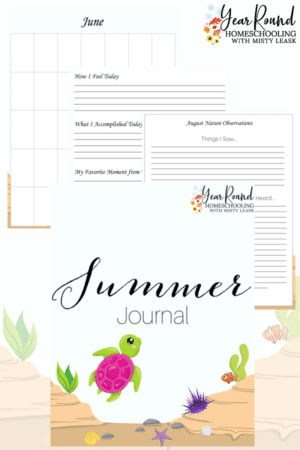 Printable Summer Journal
