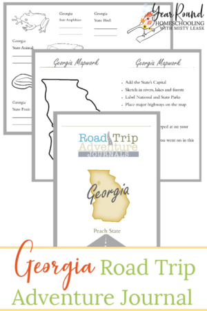 Georgia Road Trip Adventure Journal